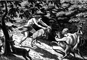 wood-engraving print: Fighting Goats